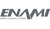 Logo Enami